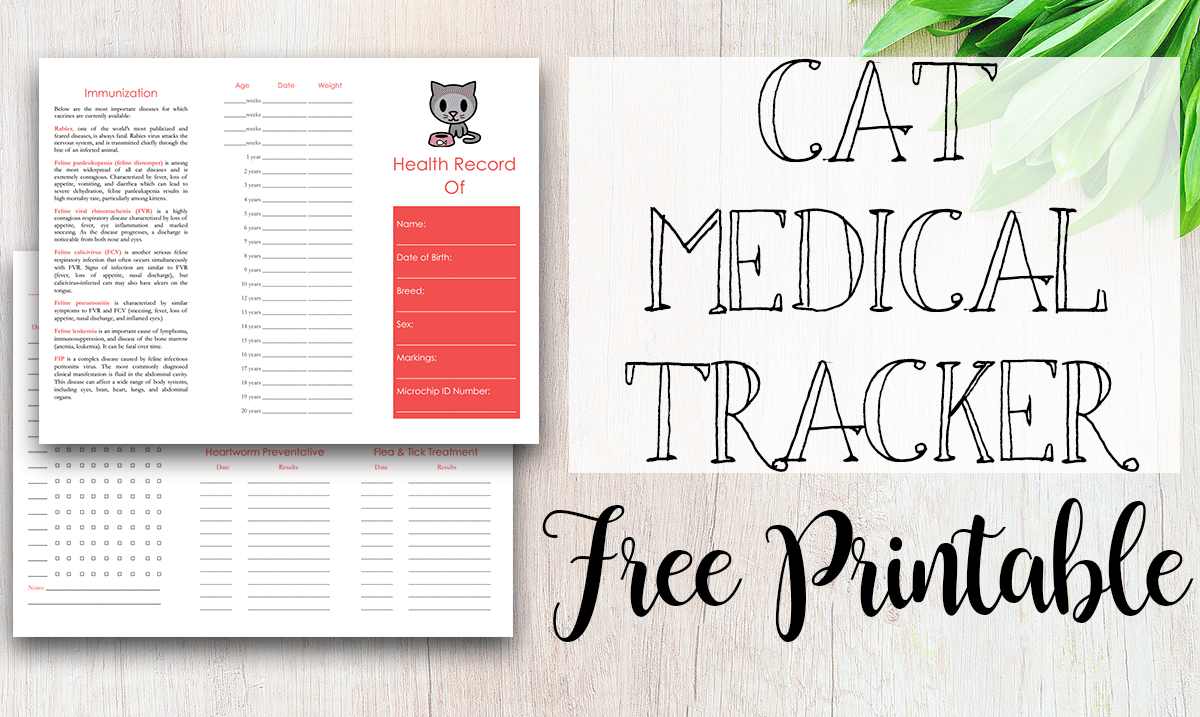 Free Printable Medical Record for Dogs - Tastefully Eclectic