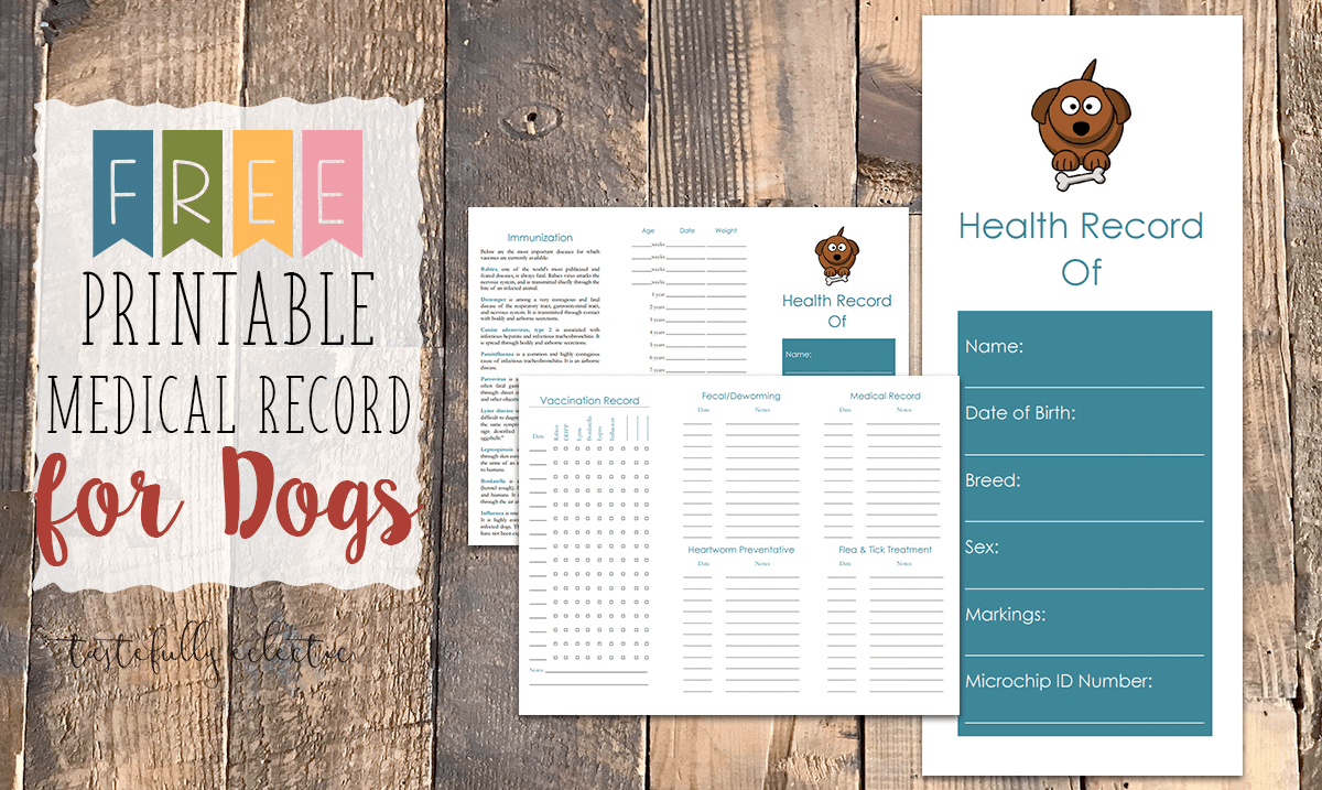 photograph about Dog Vaccination Record Printable Pdf named Cost-free Printable Health-related Background for Canines - Tastefully Eclectic
